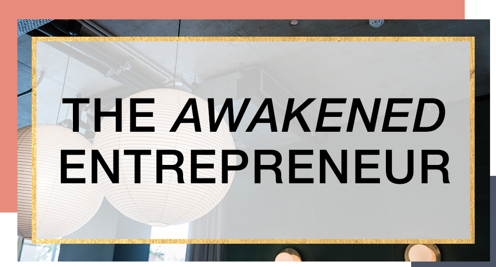 The Awakened Entreprenuer